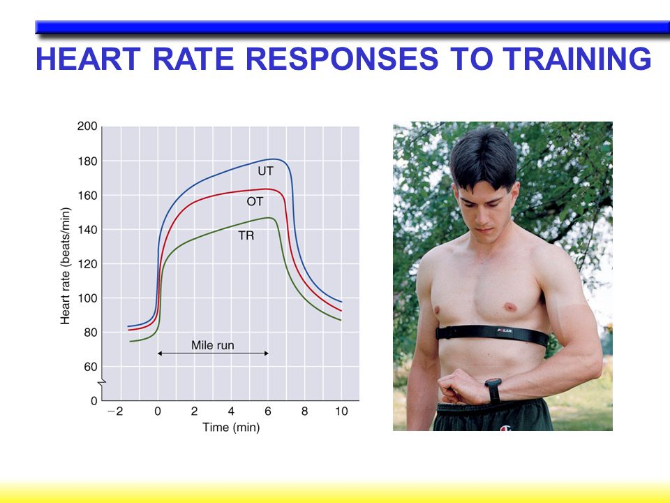 HEART RATE RESPONSES TO TRAINING