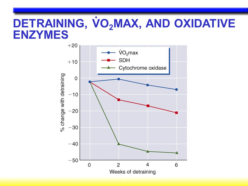 DETRAINING, VO 2 MAX, AND OXIDATIVE ENZYMES.