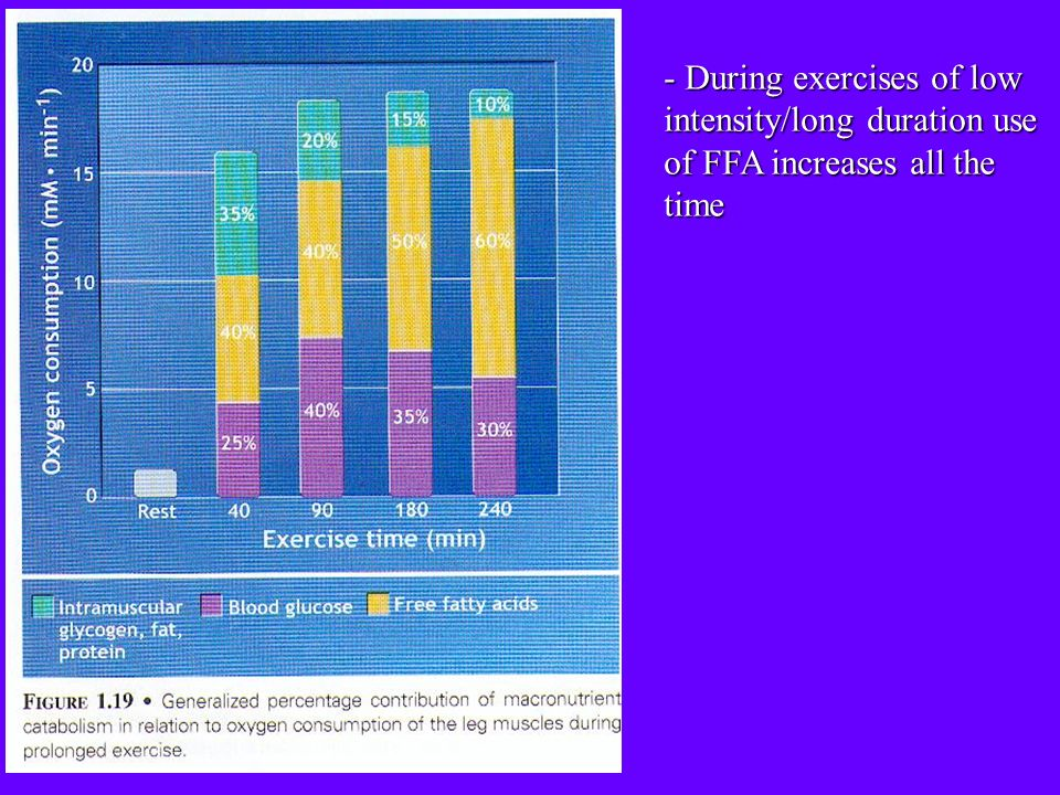 - During exercises of low intensity/long duration use of FFA increases all the time