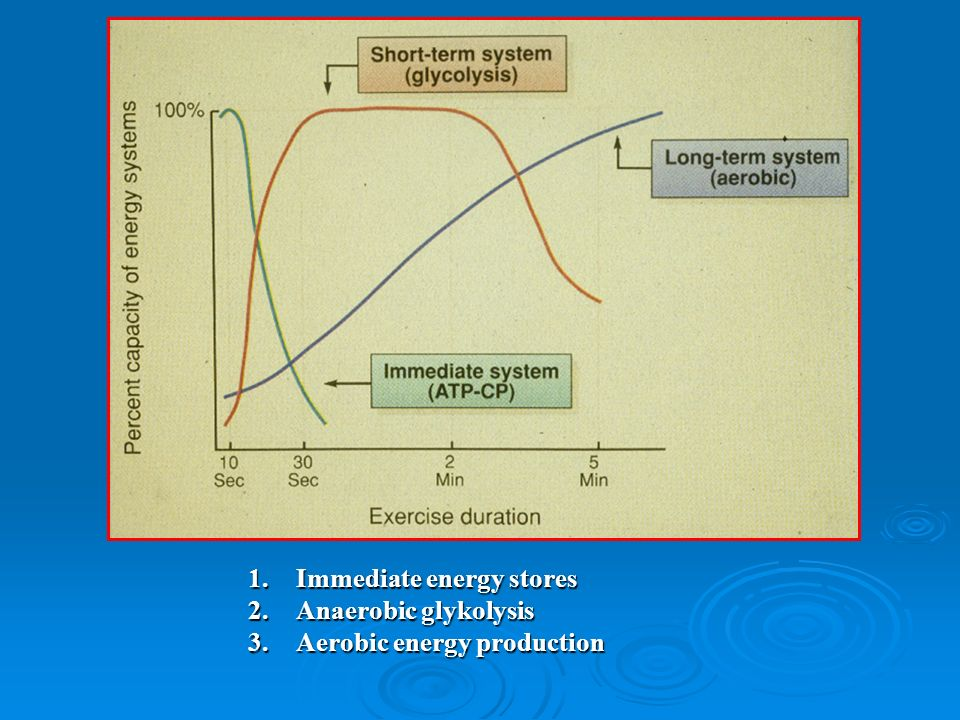 1.Immediate energy stores 2.Anaerobic glykolysis 3.Aerobic energy production