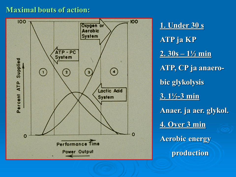 1. Under 30 s ATP ja KP 2. 30s – 1½ min ATP, CP ja anaero- bic glykolysis 3.