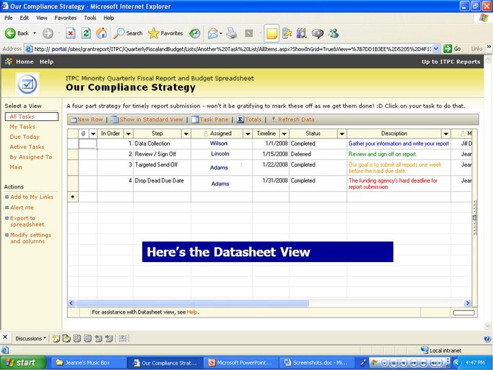20 Heres the Datasheet View