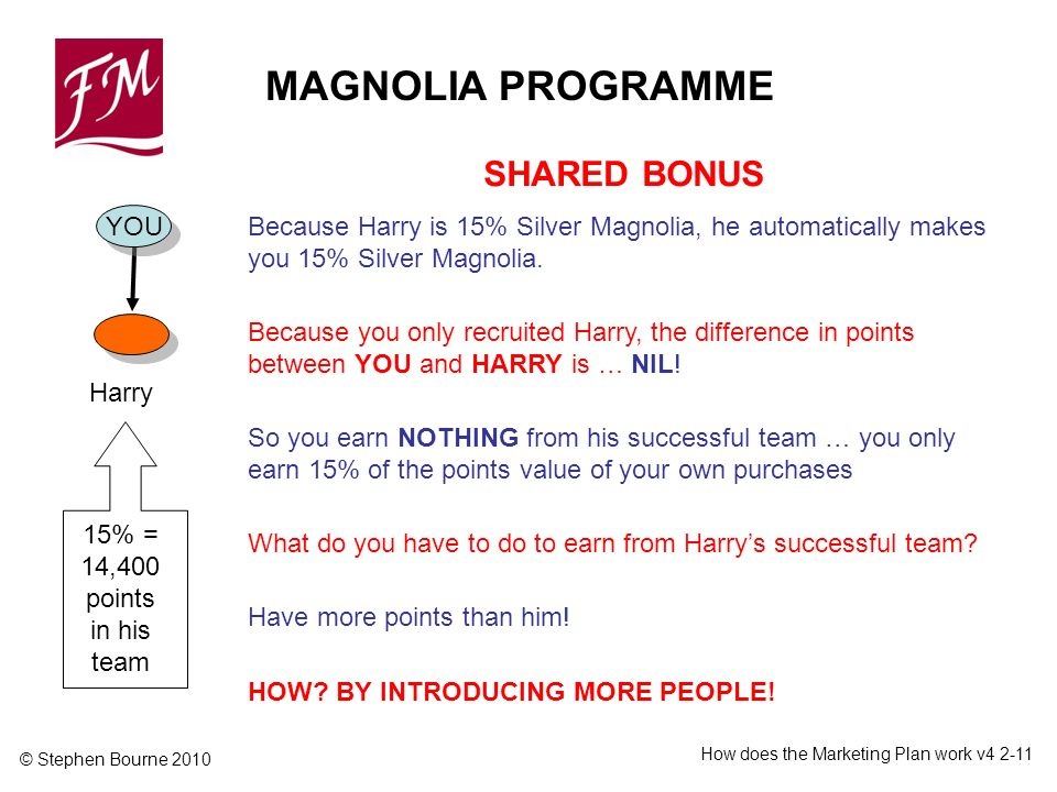 © Stephen Bourne 2010 How does the Marketing Plan work v4 2-11 15% = 14,400 points in his team YOU Harry MAGNOLIA PROGRAMME SHARED BONUS Because Harry