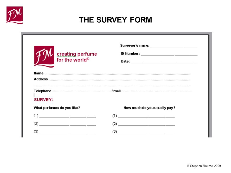 © Stephen Bourne 2009 THE SURVEY FORM