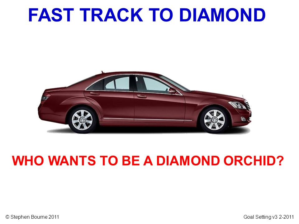 © Stephen Bourne 2011 Goal Setting v3 2-2011 FAST TRACK TO DIAMOND WHO WANTS TO BE A DIAMOND ORCHID?