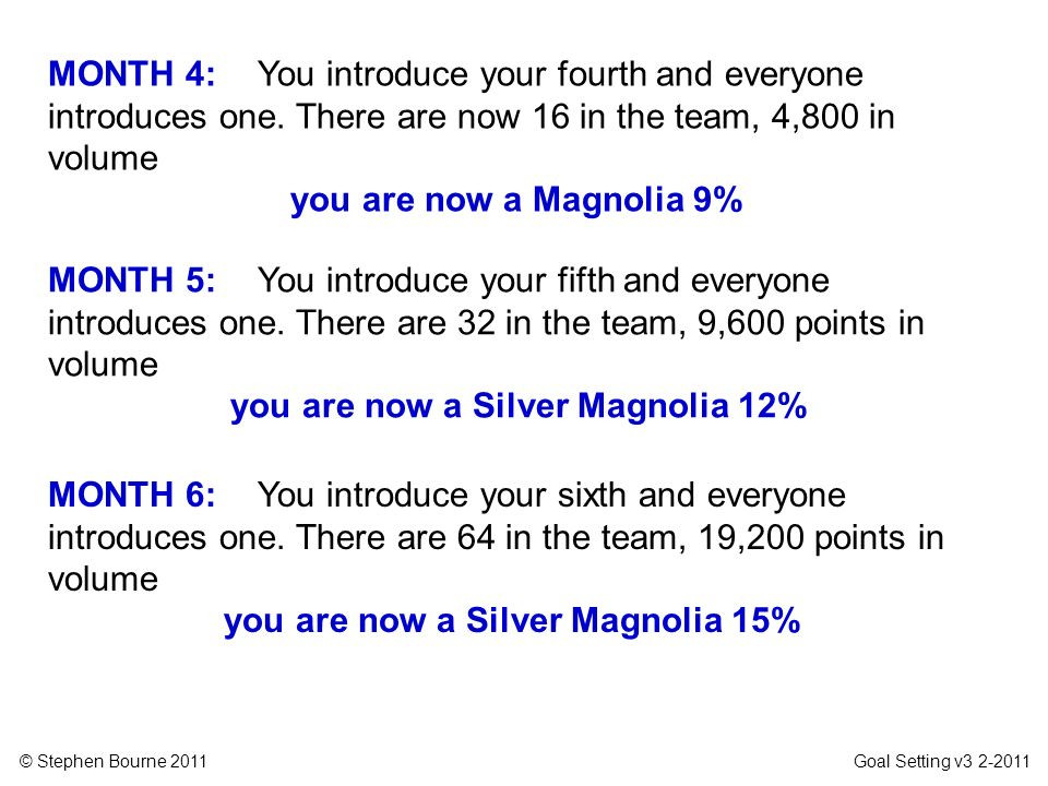 © Stephen Bourne 2011 Goal Setting v3 2-2011 MONTH 5: You introduce your fifth and everyone introduces one. There are 32 in the team, 9,600 points in