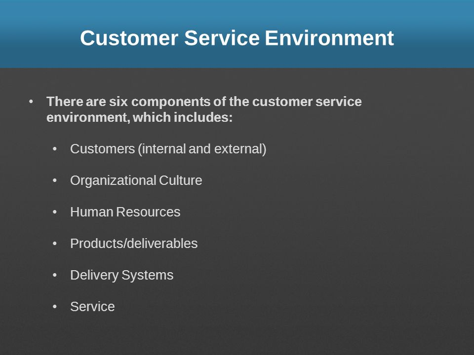 Customer Service Environment There are six components of the customer service environment, which includes: Customers (internal and external) Organizat