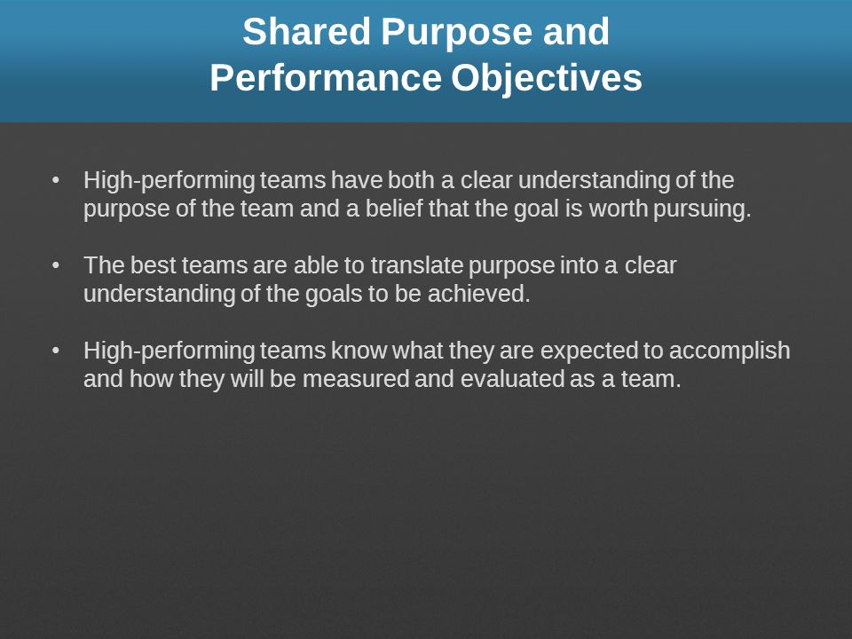Shared Purpose and Performance Objectives High-performing teams have both a clear understanding of the purpose of the team and a belief that the goal