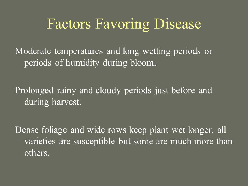 Factors Favoring Disease Moderate temperatures and long wetting periods or periods of humidity during bloom.