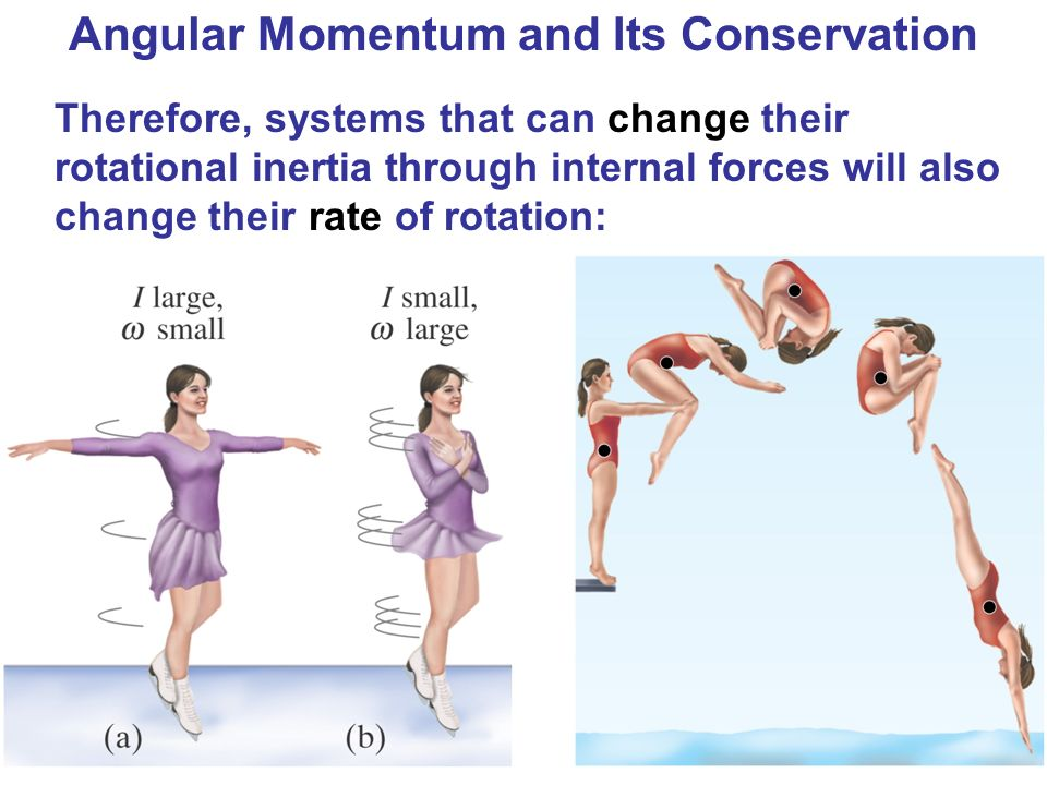 Angular Momentum and Its Conservation Therefore, systems that can change their rotational inertia through internal forces will also change their rate