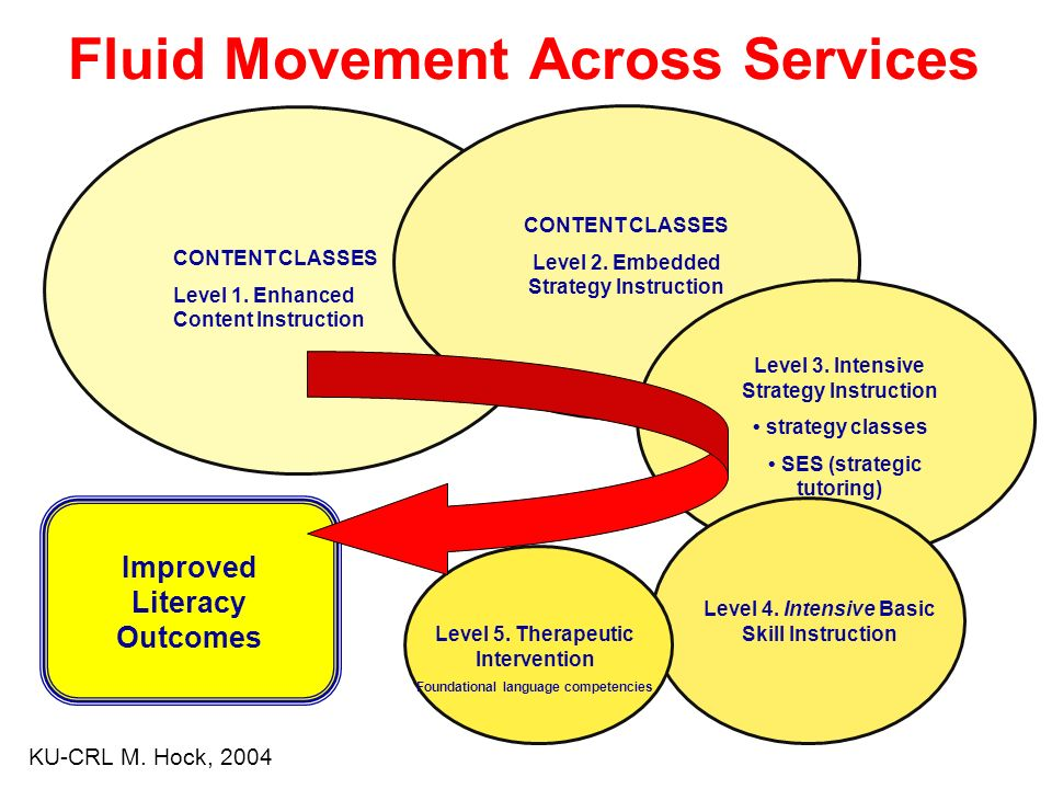 Fluid Movement Across Services Improved Literacy Outcomes CONTENT CLASSES Level 1.