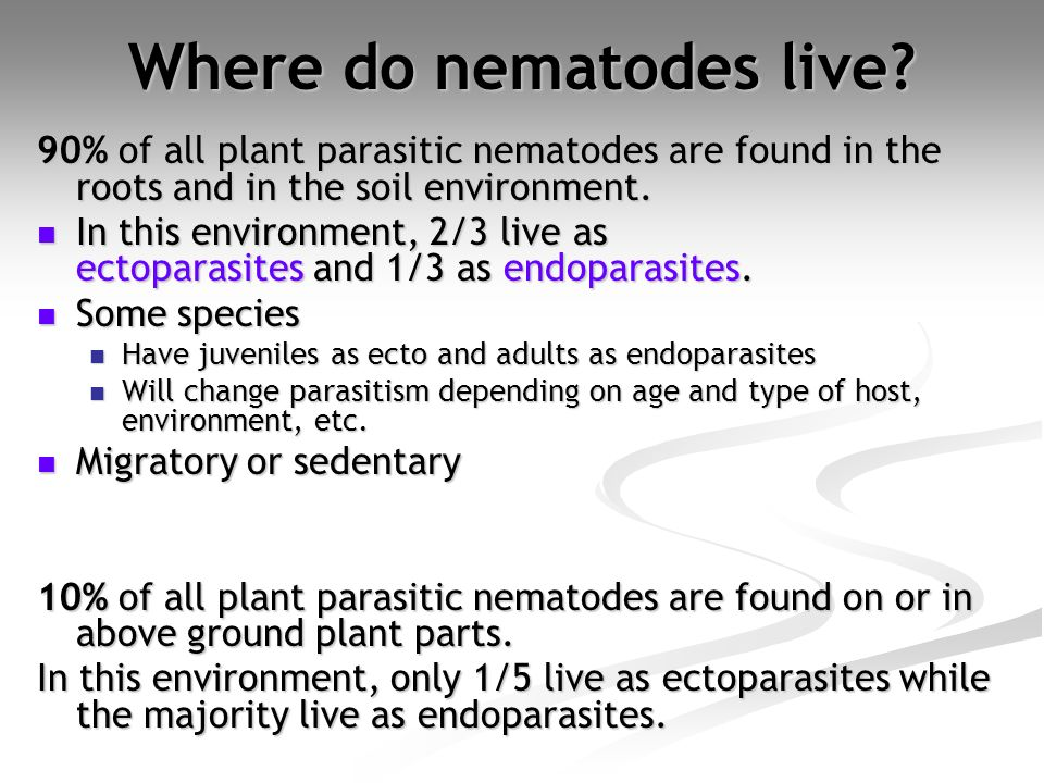 Where do nematodes live? 90% of all plant parasitic nematodes are found in the roots and in the soil environment. In this environment, 2/3 live as ect