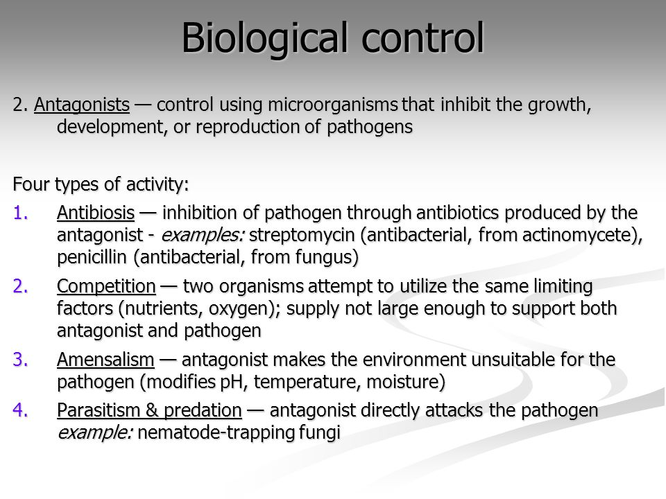 Biological control 2. Antagonists control using microorganisms that inhibit the growth, development, or reproduction of pathogens Four types of activi