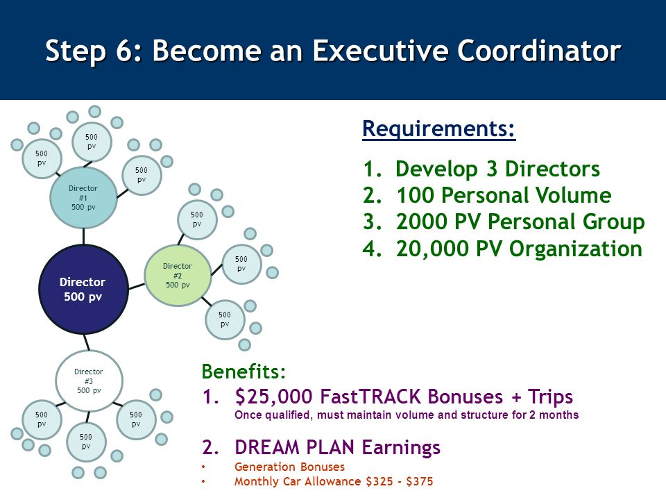 Step 6: Become an Executive Coordinator Requirements: 1.Develop 3 Directors Personal Volume PV Personal Group 4.20,000 PV Organization Benefits: 1.$25,000 FastTRACK Bonuses + Trips Once qualified, must maintain volume and structure for 2 months 2.DREAM PLAN Earnings Generation Bonuses Monthly Car Allowance $325 - $375 Director 500 pv Director #1 500 pv Director #3 500 pv Director #2 500 pv