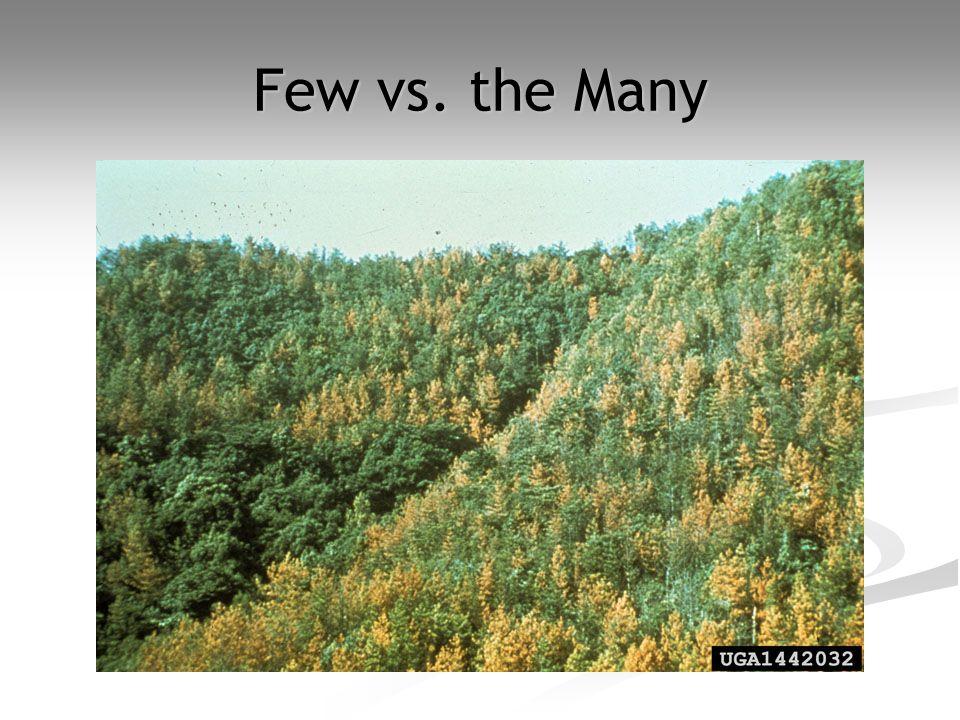 Few vs. the Many
