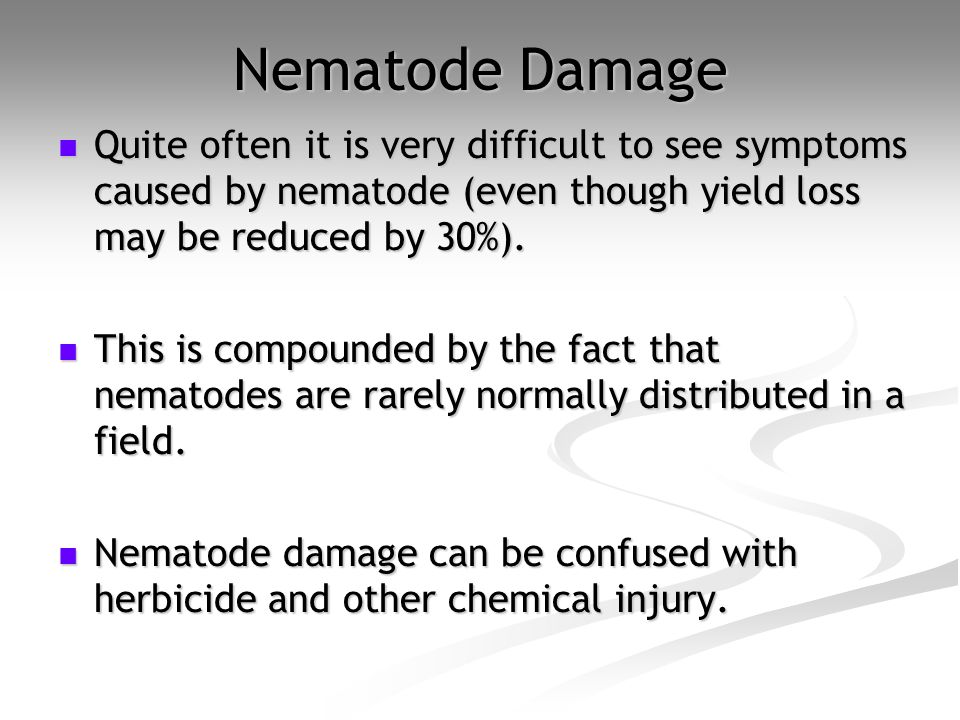 Nematode Damage Quite often it is very difficult to see symptoms caused by nematode (even though yield loss may be reduced by 30%). Quite often it is