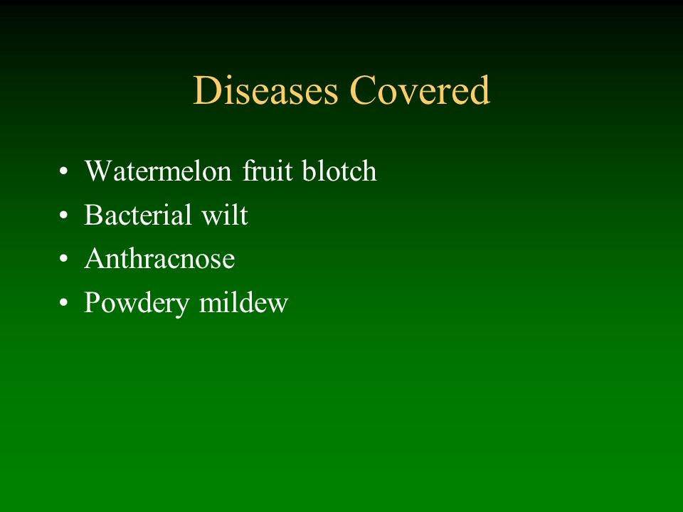 Diseases Covered Watermelon fruit blotch Bacterial wilt Anthracnose Powdery mildew