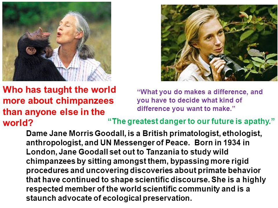 Dame Jane Morris Goodall, is a British primatologist, ethologist, anthropologist, and UN Messenger of Peace.