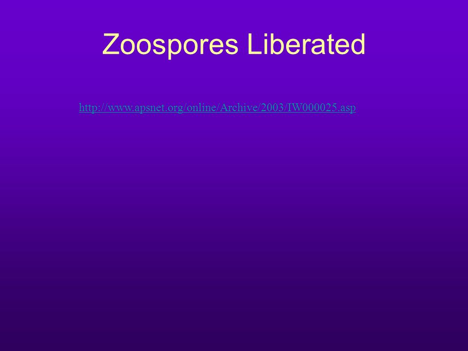 Zoospores Liberated http://www.apsnet.org/online/Archive/2003/IW000025.asp