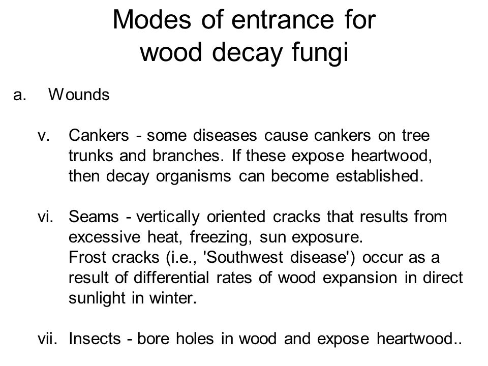 Modes of entrance for wood decay fungi a.Wounds v.Cankers - some diseases cause cankers on tree trunks and branches. If these expose heartwood, then d