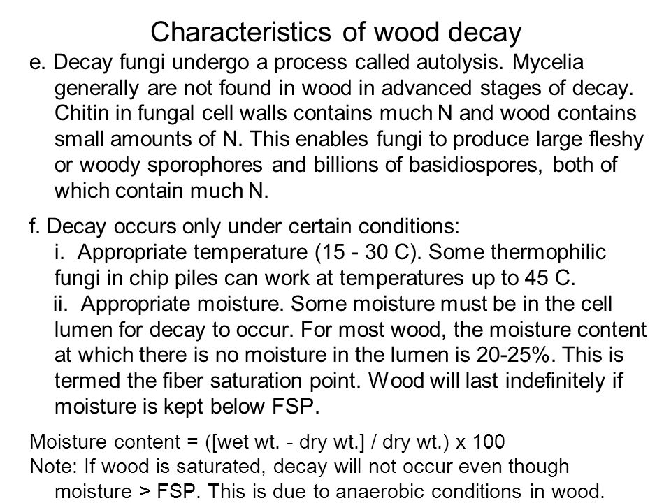 Characteristics of wood decay e. Decay fungi undergo a process called autolysis. Mycelia generally are not found in wood in advanced stages of decay.