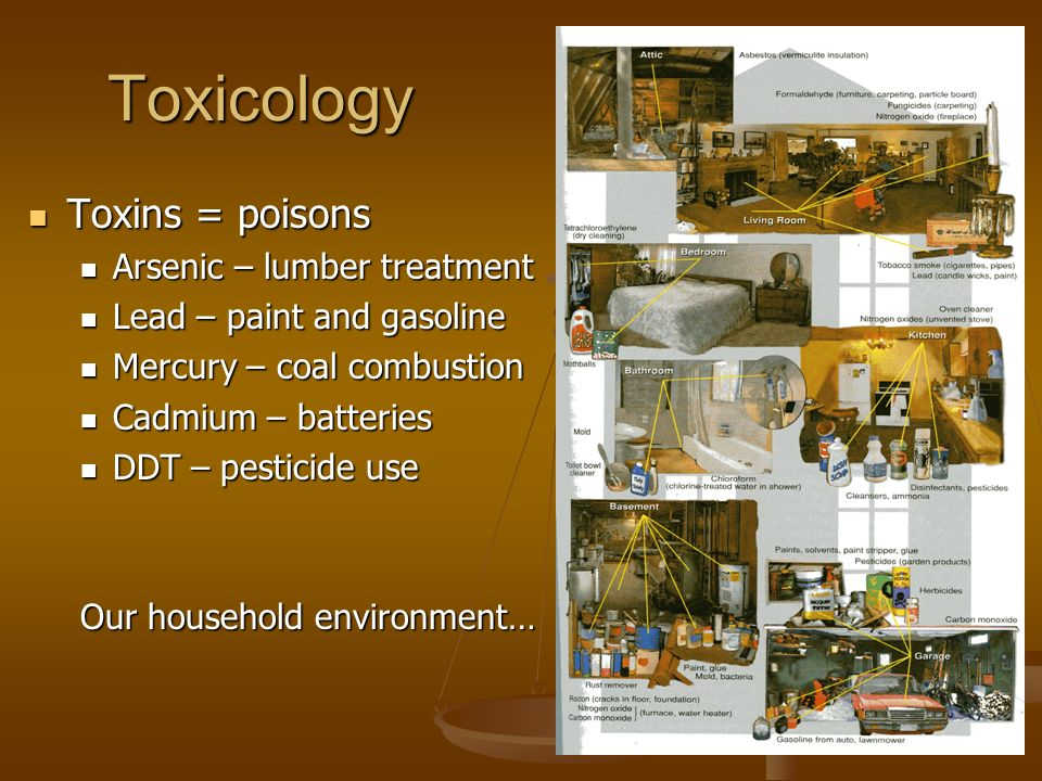 Toxicology Toxins = poisons Toxins = poisons Arsenic – lumber treatment Arsenic – lumber treatment Lead – paint and gasoline Lead – paint and gasoline