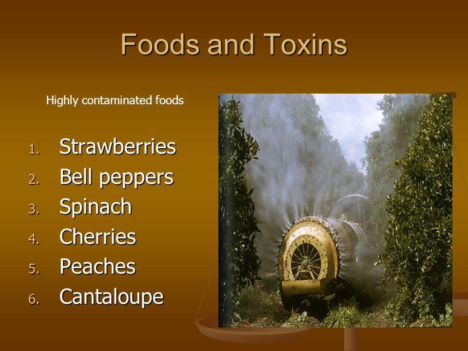 Foods and Toxins 1. Strawberries 2. Bell peppers 3. Spinach 4. Cherries 5. Peaches 6. Cantaloupe Highly contaminated foods