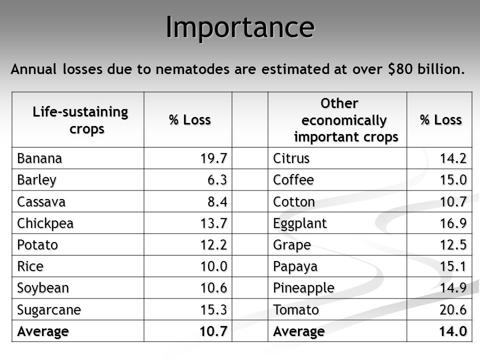 Life-sustaining crops Life-sustaining crops % Loss % Loss Other economically important crops Other economically important crops % Loss % Loss Banana19