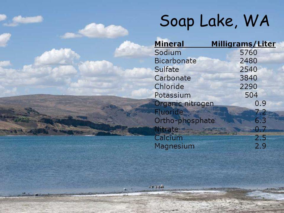 Soap Lake, WA MineralMilligrams/Liter Sodium5760 Bicarbonate2480 Sulfate2540 Carbonate3840 Chloride2290 Potassium 504 Organic nitrogen 0.9 Fluoride 7.