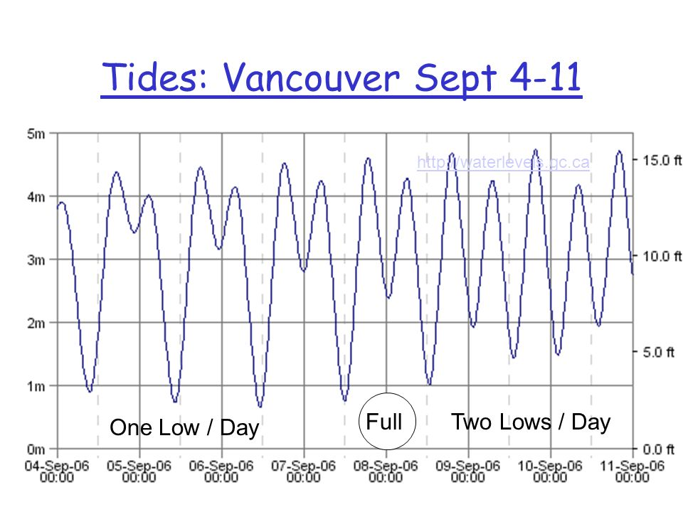 Sun and Moon Effects Quarter Moon Low (Neap) Tides