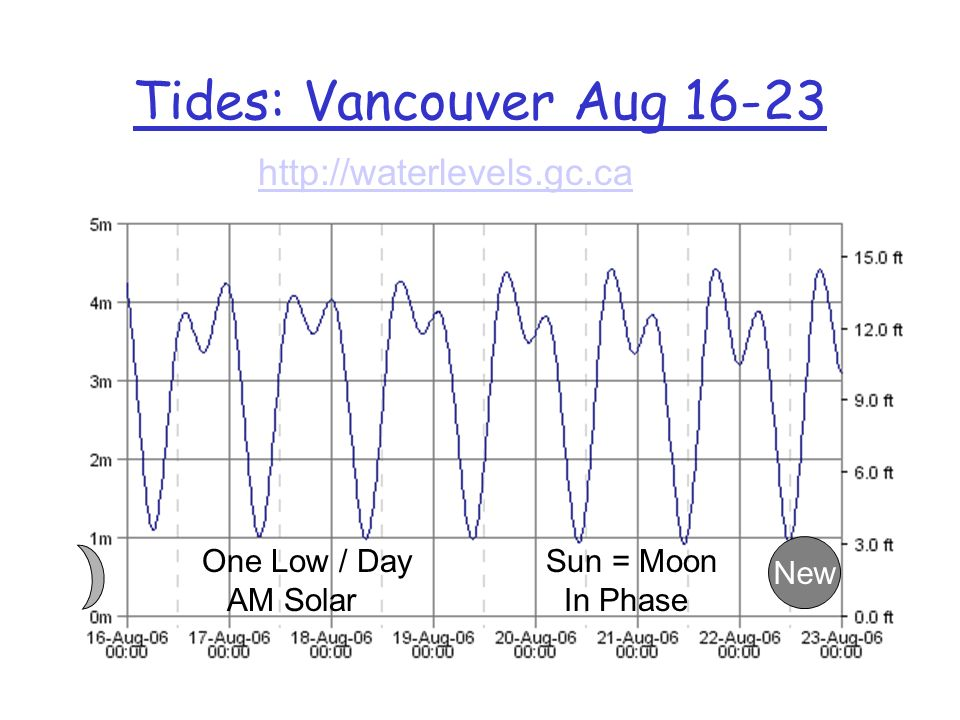 Typical WXTides32 Screen Now Daytime Night