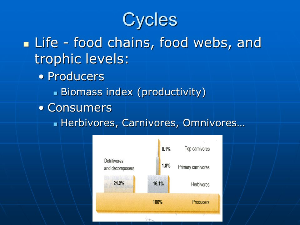 Cycles Life - food chains, food webs, and trophic levels: Life - food chains, food webs, and trophic levels: ProducersProducers Biomass index (product
