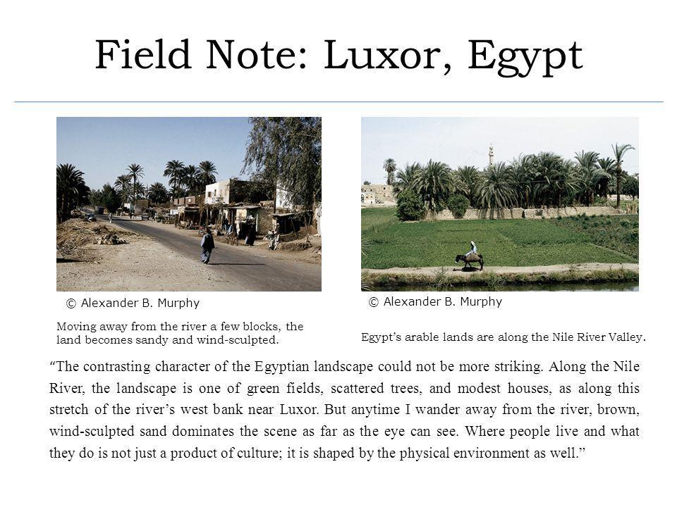 Field Note: Luxor, Egypt The contrasting character of the Egyptian landscape could not be more striking. Along the Nile River, the landscape is one of