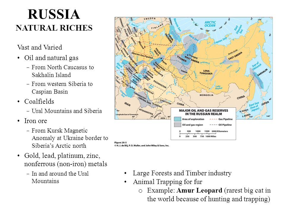 RUSSIA NATURAL RICHES Vast and Varied Oil and natural gas From North Caucasus to Sakhalin Island From western Siberia to Caspian Basin Coalfields Ural