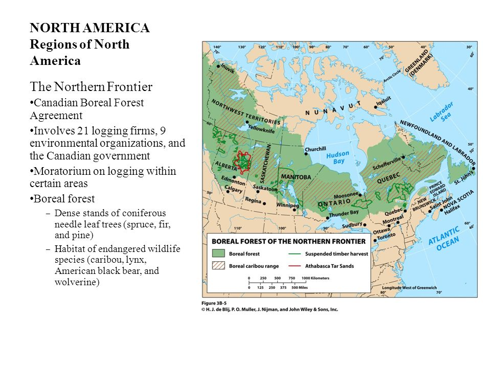 NORTH AMERICA Regions of North America The Northern Frontier Canadian Boreal Forest Agreement Involves 21 logging firms, 9 environmental organizations