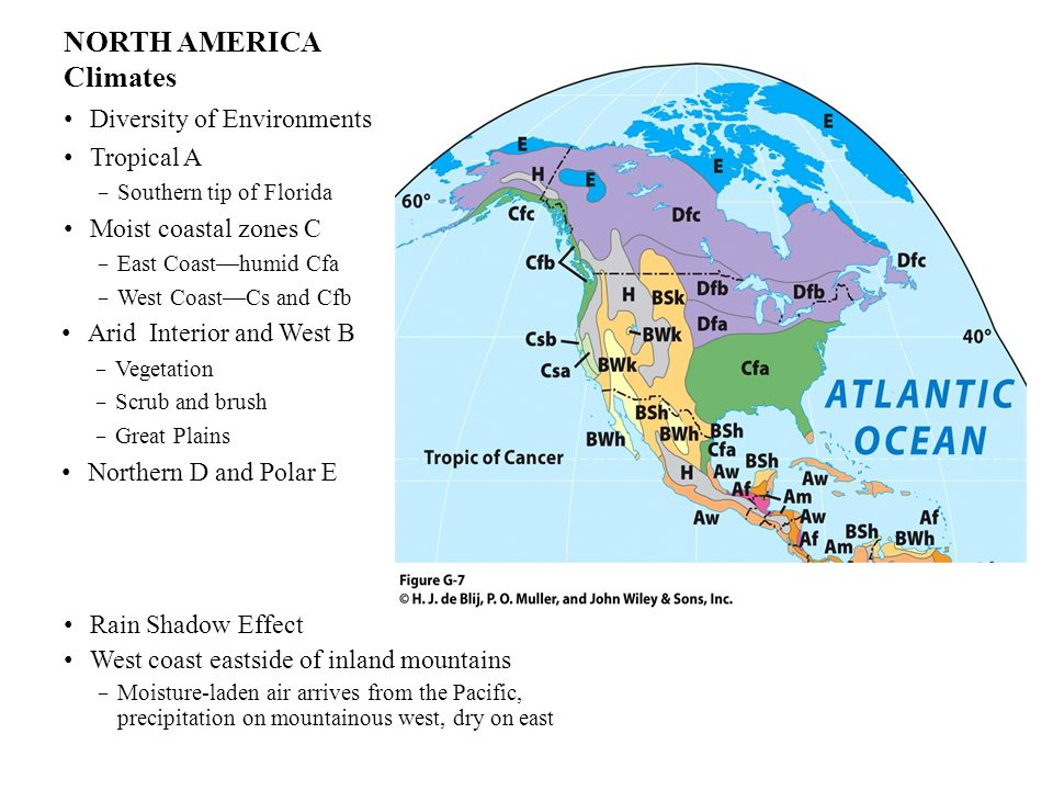 NORTH AMERICA Climates Diversity of Environments Tropical A Southern tip of Florida Moist coastal zones C East Coasthumid Cfa West CoastCs and Cfb Ari