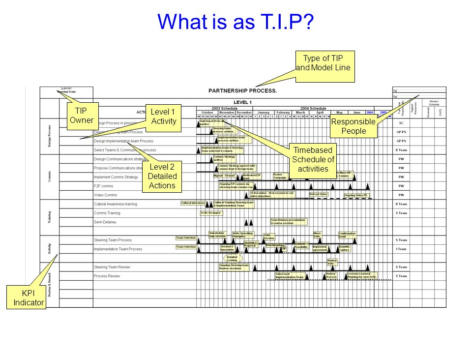 What is as T.I.P? TIP Owner KPI Indicator Level 1 Activity Level 2 Detailed Actions Timebased Schedule of activities Type of TIP and Model Line Respon