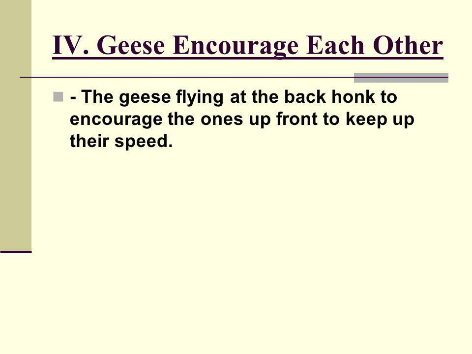 IV. Geese Encourage Each Other - The geese flying at the back honk to encourage the ones up front to keep up their speed.
