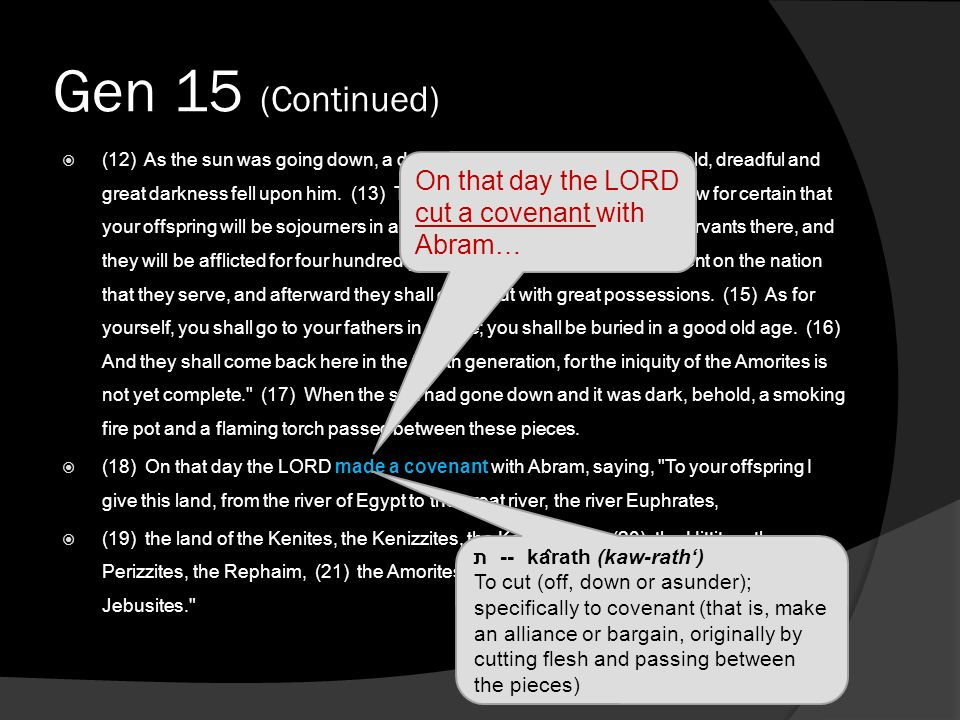 Gen 15 (Continued) (12) As the sun was going down, a deep sleep fell on Abram. And behold, dreadful and great darkness fell upon him. (13) Then the LO