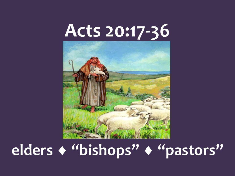 Acts 20:17-36 elders bishops pastors