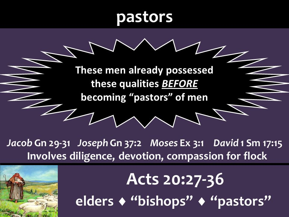 pastors Acts 20:27-36 elders bishops pastors Jacob Gn 29-31Joseph Gn 37:2Moses Ex 3:1David 1 Sm 17:15 Involves diligence, devotion, compassion for flock These men already possessed these qualities BEFORE becoming pastors of men