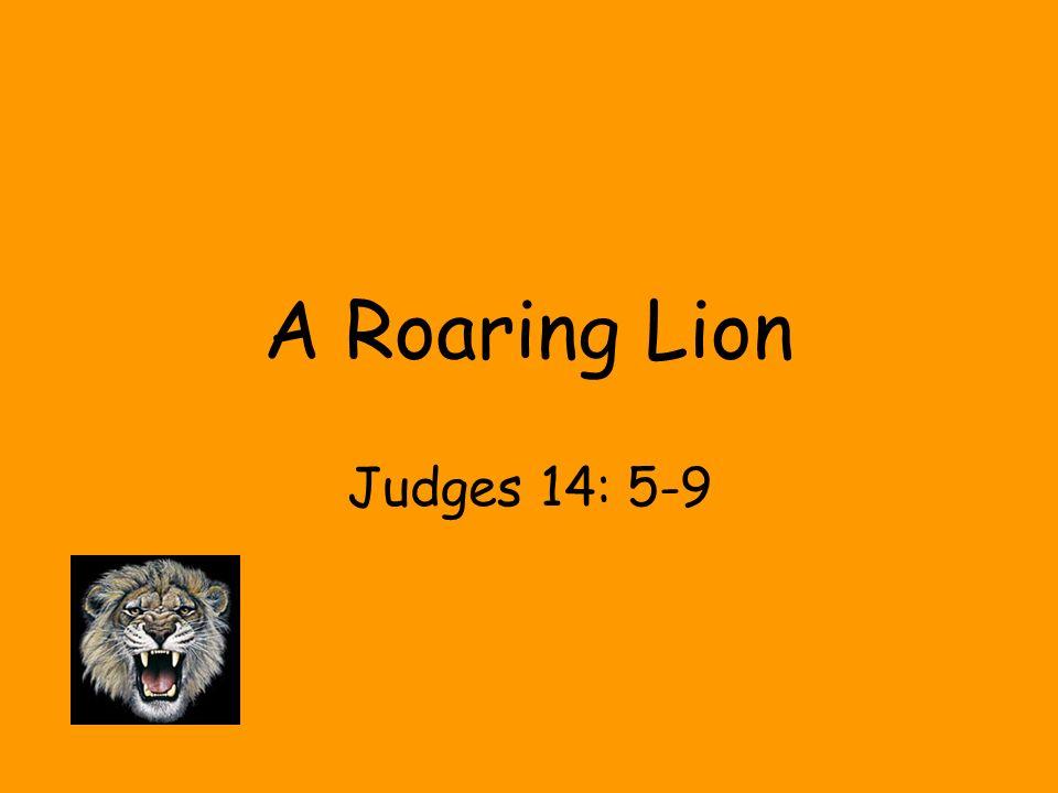 A Roaring Lion Judges 14: 5-9