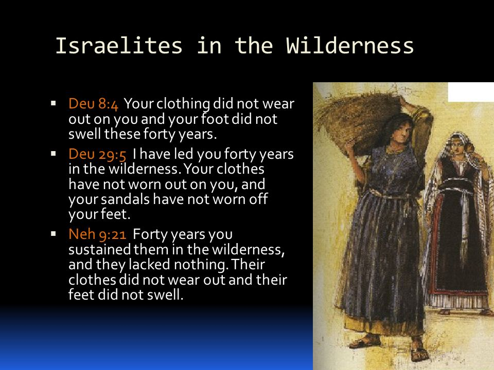 Israelites in the Wilderness Deu 8:4 Your clothing did not wear out on you and your foot did not swell these forty years.