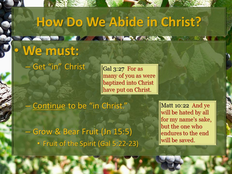 How Do We Abide in Christ? We must: We must: – Get in Christ – Continue to be in Christ. – Grow & Bear Fruit (Jn 15:5) Fruit of the Spirit (Gal 5:22-2