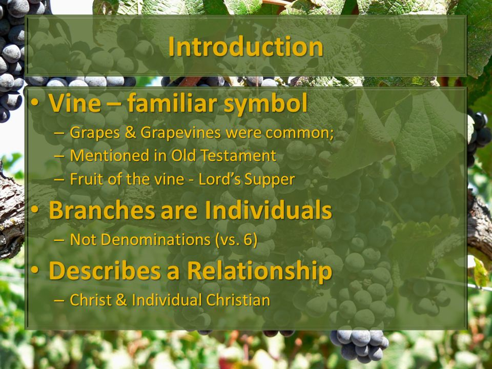 Introduction Vine – familiar symbol Vine – familiar symbol – Grapes & Grapevines were common; – Mentioned in Old Testament – Fruit of the vine - Lords