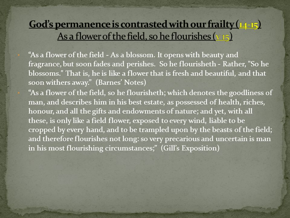 As a flower of the field - As a blossom. It opens with beauty and fragrance, but soon fades and perishes. So he flourisheth - Rather,