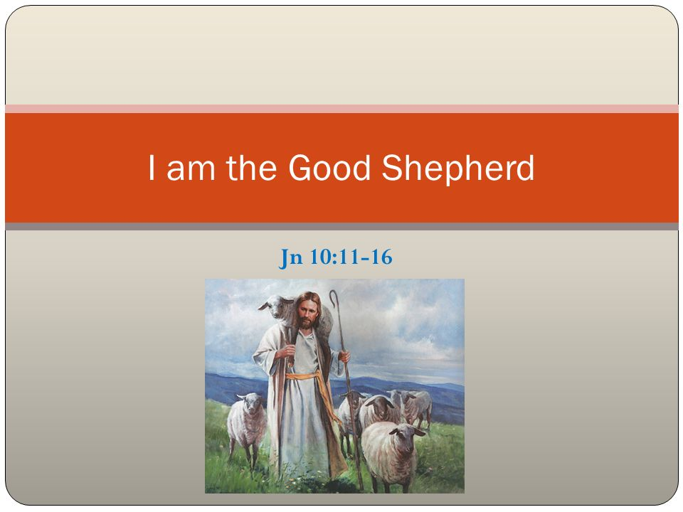 Jn 10:11-16 I am the Good Shepherd