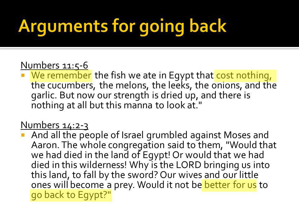 Numbers 11:5-6 We remember the fish we ate in Egypt that cost nothing, the cucumbers, the melons, the leeks, the onions, and the garlic.
