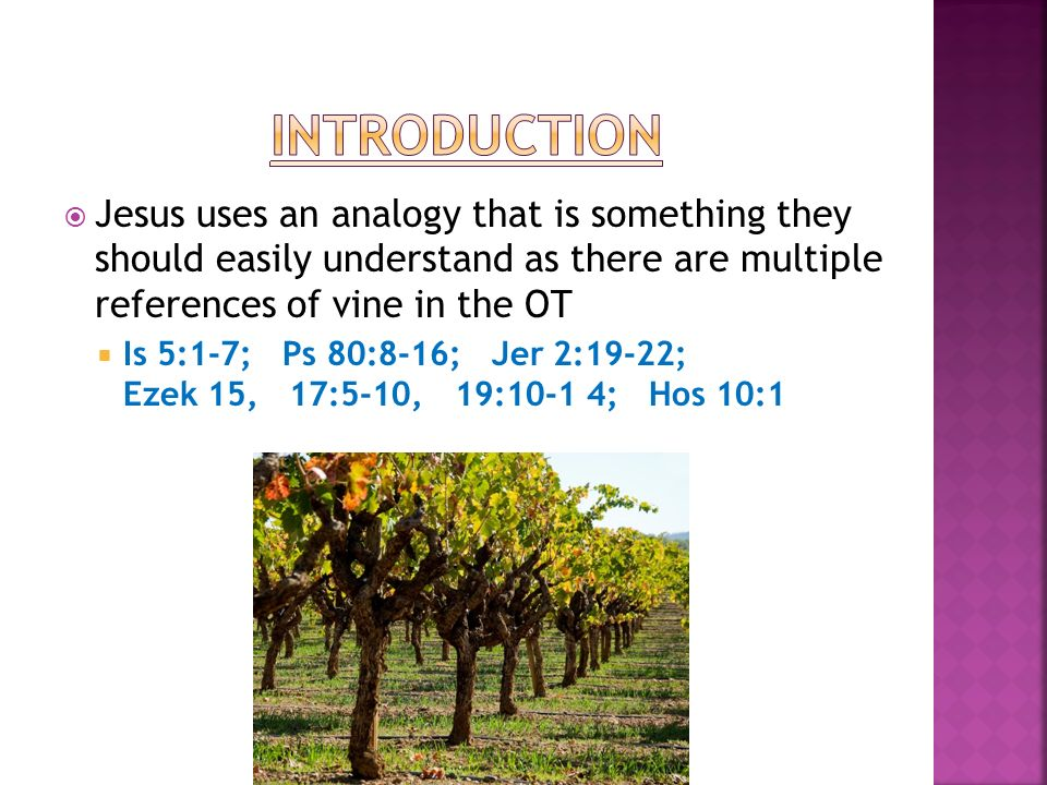 Jesus uses an analogy that is something they should easily understand as there are multiple references of vine in the OT Is 5:1-7; Ps 80:8-16; Jer 2:19-22; Ezek 15, 17:5-10, 19:10-1 4; Hos 10:1