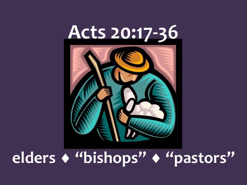 elders bishops pastors